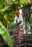 Το κάθετο πλήρες σώμα μιας χαρούμενης γυναίκας αφροαμερικάνων που φορά ένα φωτεινό ζωηρόχρωμο εθνικό φόρεμα θέτει στον κήπο στοκ εικόνες