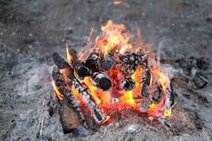 Το κάψιμο και το απανθρακωμένο ξύλο συνδέονται μια πυρκαγιά Στοκ εικόνα με δικαίωμα ελεύθερης χρήσης