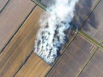 Το κάψιμο του αχύρου ρυζιού στους τομείς Καπνός από το κάψιμο του αχύρου ρυζιού στους ελέγχους Πυρκαγιά στον τομέα Στοκ Εικόνα
