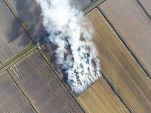 Το κάψιμο του αχύρου ρυζιού στους τομείς Καπνός από το κάψιμο Στοκ φωτογραφία με δικαίωμα ελεύθερης χρήσης