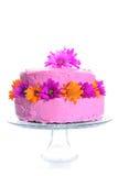 το κέικ ανθίζει τη φρέσκια &k στοκ φωτογραφίες