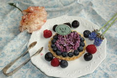 Το κέικ βακκινίων με τρώει Στοκ φωτογραφία με δικαίωμα ελεύθερης χρήσης