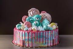 Το κέικ παιδιών που διακοσμείται με Teddy αντέχει και ζωηρόχρωμες μαρέγκες, marshmallows Έννοια των επιδορπίων για τα παιδιά γενε Στοκ Φωτογραφίες