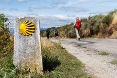 Το κίτρινο κοχύλι scallog και ένας προσκυνητής Στοκ φωτογραφία με δικαίωμα ελεύθερης χρήσης