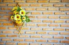 Το κίτρινο λουλούδι κρεμά στο τουβλότοιχο Στοκ Εικόνα