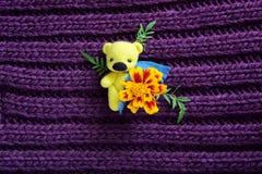 Το κίτρινο παιχνίδι αντέχει με το λουλούδι Στοκ φωτογραφίες με δικαίωμα ελεύθερης χρήσης
