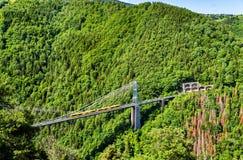 Το κίτρινο τραίνο (τραίνο Jaune) στη γέφυρα Cassagne - Γαλλία Στοκ Εικόνες