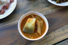 Το κίτρινο ψάρι κάρρυ στα άσπρα ταϊλανδικά νότια τρόφιμα ύφους κύπελλων, khaw ταϊλανδική λέξη khang-Tj, μεγάλα κομμάτια της σούπα στοκ εικόνα με δικαίωμα ελεύθερης χρήσης