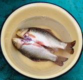 Το καθαρισμένο ψάρι είναι σε ένα πιάτο Στοκ Φωτογραφίες