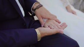 Το καλό γαμήλιο ζεύγος φιλά το ένα το άλλο και αγκαλιάζει κοντά στο ηλιοβασίλεμα κάστρων 4k απόθεμα βίντεο