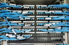 Το καλώδιο του τοπικού LAN συνδέει με τη μονάδα κεντρικών υπολογιστών Στοκ φωτογραφία με δικαίωμα ελεύθερης χρήσης