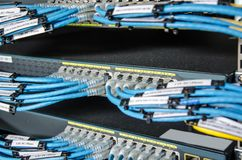 Το καλώδιο του τοπικού LAN συνδέει με τη μονάδα κεντρικών υπολογιστών Στοκ Φωτογραφία