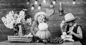 Το καπέλο ένδυσης αγοριών κοριτσιών παιδιών γιορτάζει το αγροτικό ύφος φεστιβάλ συγκομιδών Γιορτάστε τις παραδόσεις πτώσης Πτώση  στοκ φωτογραφία με δικαίωμα ελεύθερης χρήσης