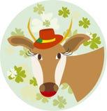 Το καπέλο αγελάδων στο υπόβαθρο του τριφυλλιού φύλλων Στοκ Εικόνες