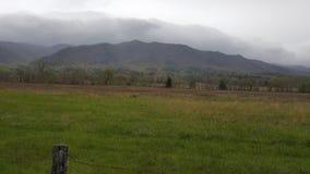Το καπνώές περιστέρι του ανατολικού Τένεσι Sevierville βουνών όρμων Cades σφυρηλατεί την πρωτόγονη σκηνή φύσης Gatlinburg Στοκ εικόνες με δικαίωμα ελεύθερης χρήσης