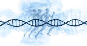 το κατάλληλο ενός κομματιού δικαίωμα θέσεων DNA έννοιας κώδικα διανυσματική απεικόνιση