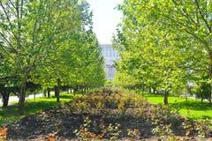 Το καταπληκτικό πάρκο Izvor στο στο κέντρο της πόλης της πόλης του Βουκουρεστι'ου σε μια ηλιόλουστη ημέρα άνοιξη στοκ φωτογραφία με δικαίωμα ελεύθερης χρήσης