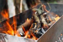 το καυσόξυλο και οι κλάδοι εγκαυμάτων δαπέδων τζακιού για τον άνθρακα Στοκ εικόνα με δικαίωμα ελεύθερης χρήσης