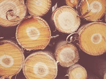 Το καυσόξυλο συσσωρεύεται Στοκ Εικόνες