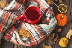 Το καυτό φλυτζάνι τσαγιού με το άνετο μαντίλι, φθινοπωρινή ρύθμιση αισθήματος σε παλαιό επιζητά Στοκ φωτογραφία με δικαίωμα ελεύθερης χρήσης