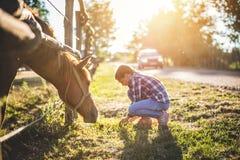 Το καφετί άλογο βόσκει από το φράκτη Στοκ φωτογραφίες με δικαίωμα ελεύθερης χρήσης