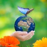 το καφετί καλυμμένο γήινο περιβαλλοντικό φύλλωμα ημέρας πηγαίνει πηγαίνοντας πράσινο δέντρο κειμένων συνθημάτων ρητών φράσεων φύσ Στοκ Φωτογραφία