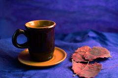 Το καφετί φλυτζάνι καφέ και ξηρός τα φύλλα στοκ εικόνα
