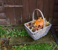 Το καλάθι με την κολοκύθα, ξεραίνει τα φύλλα και τους κώνους έλατου σε ένα αγροτικό βήμα Στοκ Εικόνες