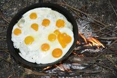 Το καλοκαίρι στη φύση της πυρκαγιάς σε ένα τηγανίζοντας τηγάνι που τηγανίζεται π.χ. Στοκ εικόνα με δικαίωμα ελεύθερης χρήσης