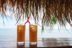 Το καλοκαίρι τροπικό αναζωογονεί τα ποτά κοκτέιλ Στοκ Φωτογραφία