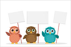 Το καλό πολύχρωμο owlet κρατά τις κενά σελίδες και το κενό για το κείμενό σας Στοκ Εικόνες