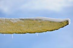 το κενό κάλυψε το χιόνι ση&mu Στοκ φωτογραφία με δικαίωμα ελεύθερης χρήσης