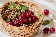 Το κεράσι είναι ένα από τα καλύτερα προϊόντα διατροφής Στοκ εικόνες με δικαίωμα ελεύθερης χρήσης