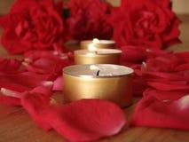 το κερί αυξήθηκε Στοκ εικόνα με δικαίωμα ελεύθερης χρήσης