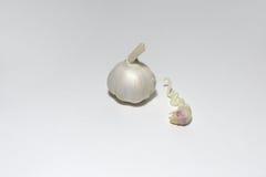 Το κεφάλι του σκόρδου και του βλαστημένου γαρίφαλου σκόρδου Στοκ Εικόνες