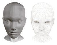 Το κεφάλι ενός κοριτσιού Στοκ εικόνες με δικαίωμα ελεύθερης χρήσης