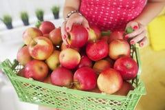 Το κιβώτιο με τα φρέσκα μήλα Στοκ εικόνες με δικαίωμα ελεύθερης χρήσης