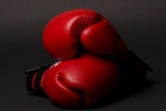 το κιβώτιο φορά γάντια στο κόκκινο Στοκ εικόνες με δικαίωμα ελεύθερης χρήσης