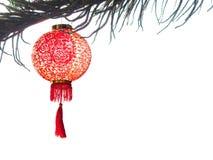 Το κινεζικό φανάρι στο δέντρο πεύκων απομονώνει στο λευκό για το κινεζικό νέο YE Στοκ φωτογραφία με δικαίωμα ελεύθερης χρήσης