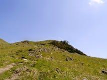 Το κοίταγμα επάνω στη βουνοπλαγιά που ολοκληρώνει έπεσε περιοχή στοκ εικόνα με δικαίωμα ελεύθερης χρήσης