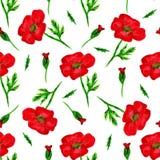Το κομψό άνευ ραφής σχέδιο με το watercolor χρωμάτισε τα κόκκινα λουλούδια παπαρουνών, στοιχεία σχεδίου Το Floral σχέδιο για τις  Στοκ εικόνες με δικαίωμα ελεύθερης χρήσης