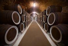 το κονιάκ κελαριών πλαισιώνει το δρύινο εκεί κρασί Στοκ Εικόνες