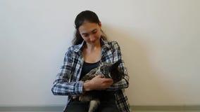 Το κορίτσι αγκαλιάζει και χαμογελά την εσωτερική γάτα Η γάτα πολύ συμπαθεί αυτή την σχηματίζει αψίδα πίσω και κολλά έξω την ουρά  απόθεμα βίντεο