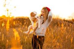Το κορίτσι γέλιου με το δροσερό κουτάβι σκυλιών κόλλεϊ συνόρων παραδίδει επάνω τον πράσινο τομέα ηλιοβασίλεμα ουρανού στο υπόβαθρ στοκ φωτογραφία με δικαίωμα ελεύθερης χρήσης