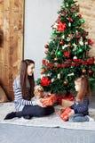 Το κορίτσι δίνει το δώρο στην αδελφή Η έννοια των Χριστουγέννων και του νέου έτους Στοκ εικόνες με δικαίωμα ελεύθερης χρήσης