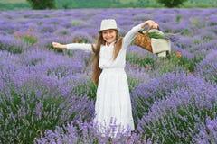 Το κορίτσι είναι στο lavender τομέα, όμορφο πορτρέτο, άσπρο φόρεμα, θερινό τοπίο Στοκ εικόνες με δικαίωμα ελεύθερης χρήσης