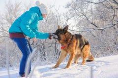 Το κορίτσι εκπαιδεύει το γερμανικό ποιμένα σκυλιών της Στοκ φωτογραφίες με δικαίωμα ελεύθερης χρήσης