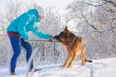 Το κορίτσι εκπαιδεύει το γερμανικό ποιμένα σκυλιών της Στοκ εικόνες με δικαίωμα ελεύθερης χρήσης