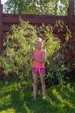 Το κορίτσι εξετάζει τα φύλλα στη νέα ιτιά στοκ εικόνες