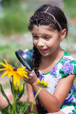 Το κορίτσι εξετάζει τον κάνθαρο μέσω της ενίσχυσης - γυαλί Στοκ Φωτογραφία